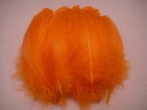 Full Nagoire QTY 50 - Orange
